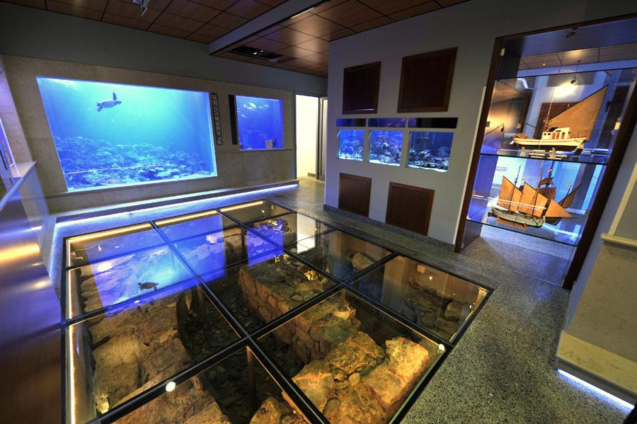 Referenzen ffentliche anlagen for Floor fish tank